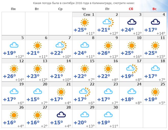 Погода до нового года в санкт петербурге