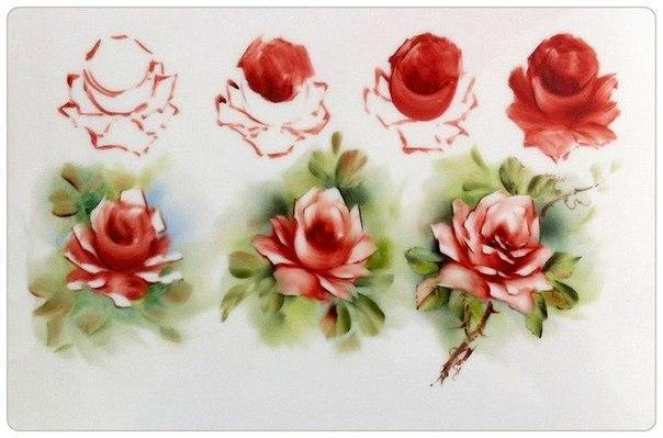 Розы акварелью поэтапно для начинающих