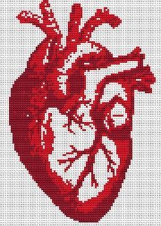 реалистичное сердце из груди с сосудами вышивка крестиком