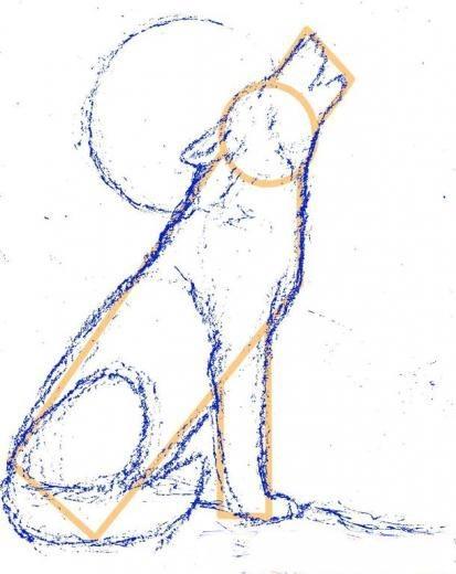 рисунок с волком карандашом поэтапно