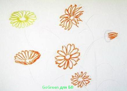 как нарисовать календулу поэтапно, как нарисовать цветы карандашом поэтапно