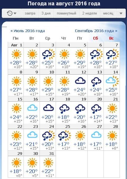 сильными считаются погода в питере август 2016 прекращение юридических