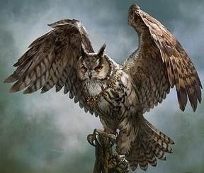 Образ Сова Хекима. Небеса.