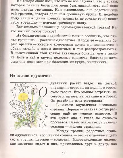рассказ тысячелистник из книги зеленые страницы