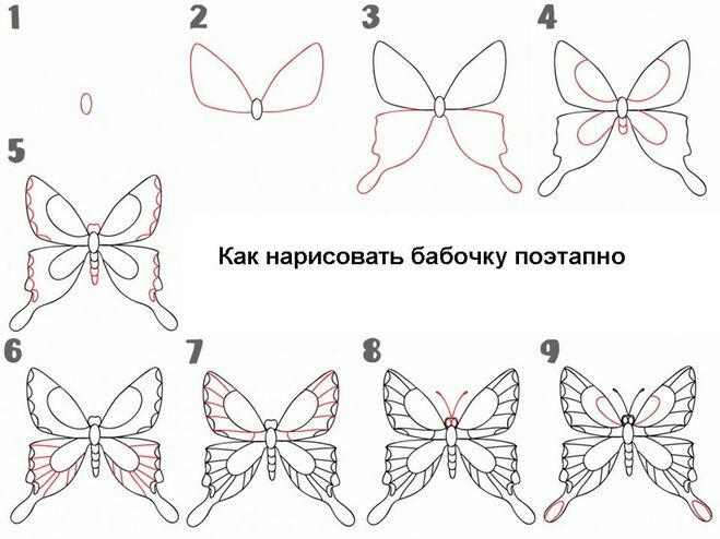 Как нарисовать бабочку схем
