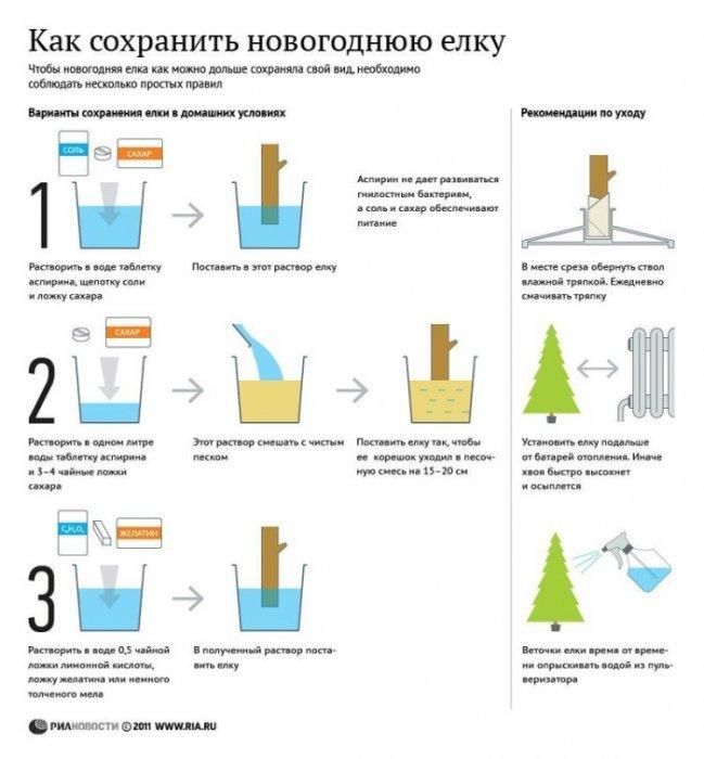 Как сделать чтобы дольше стояла елка