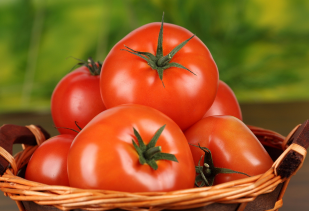 когда сажать помидоры в феврале 2018 года