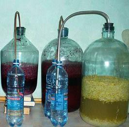 Рецепты домашнего вина из винограда