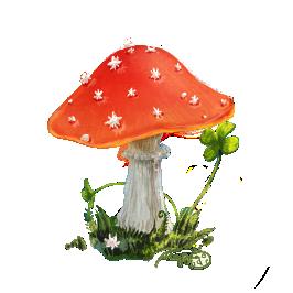 гриб мухомор, почему мухомор так называется