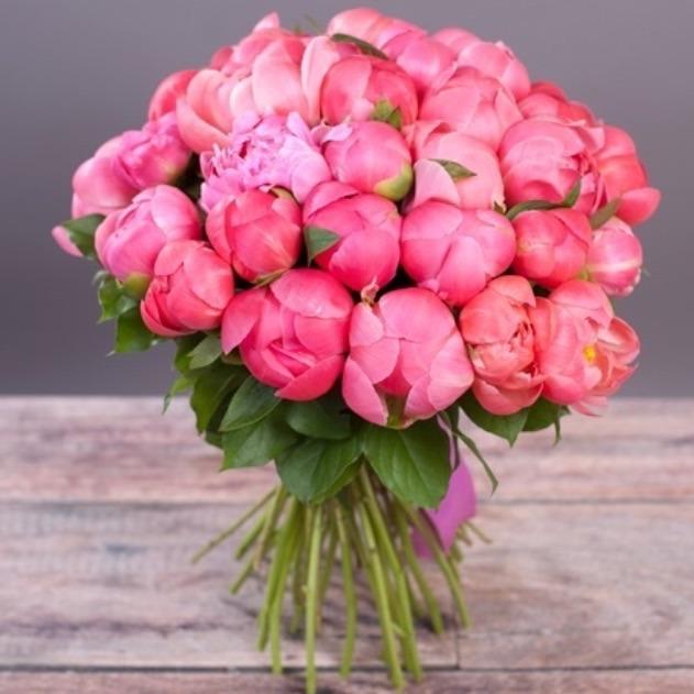 С днем рождения картинки цветы пионы