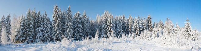 рифма к слову зима