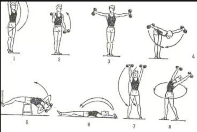 Упражнения с гантелями зарядка