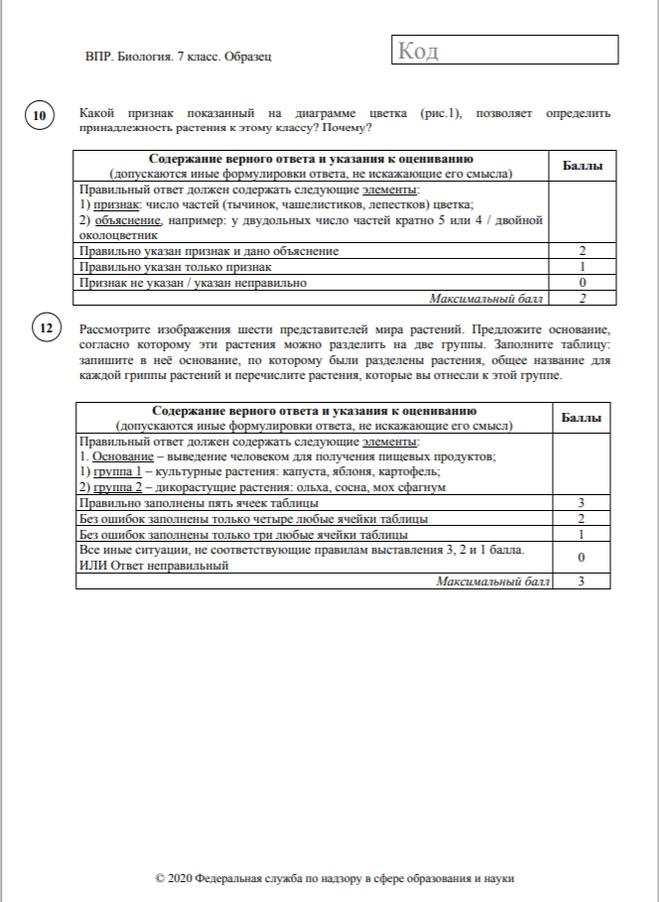 класс критерии оценок