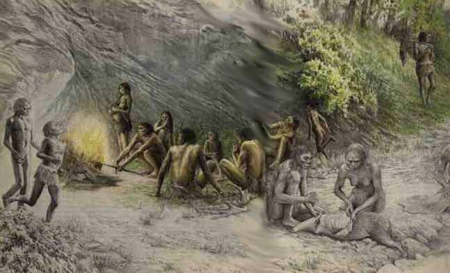 early humans and their transition from hunting to agriculture Chimpanzees are the closest relatives of humans hunting has a the evolution of early humans in with the initial transition from foraging to agriculture.