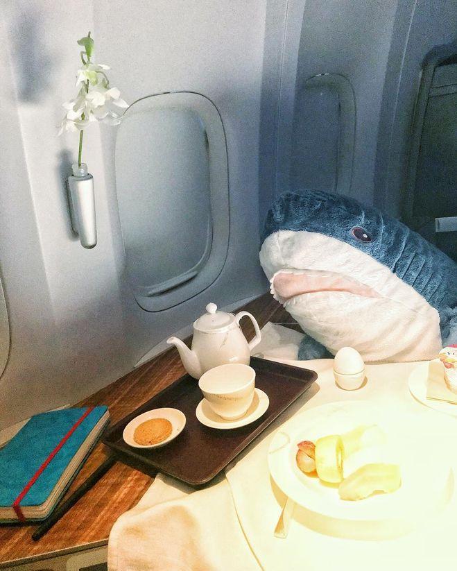 """Почему всем так нравится акула из """" икеи"""
