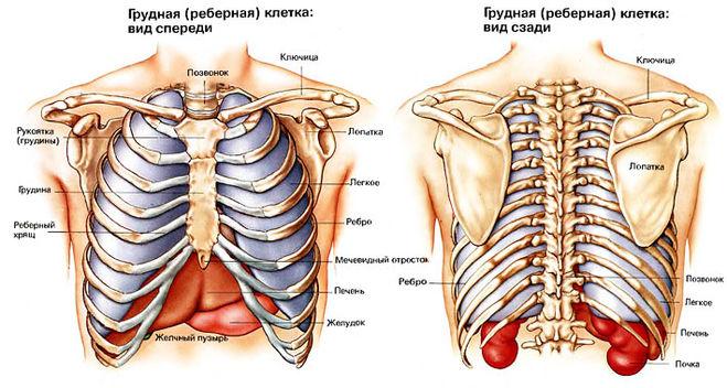 Боль справа или слева при нажатии