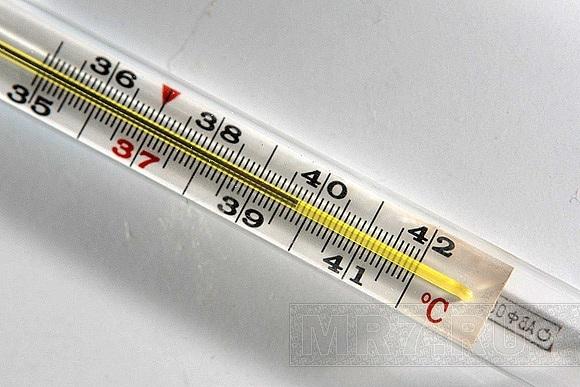 Если температура 41 у взрослого что делать