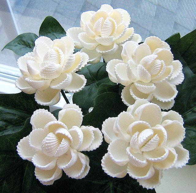 Как сделать из ракушек цветы
