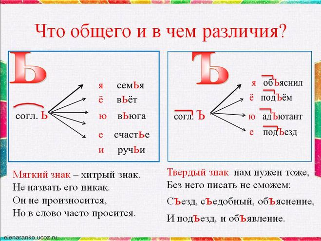 какие орфограммы есть с ь знаком