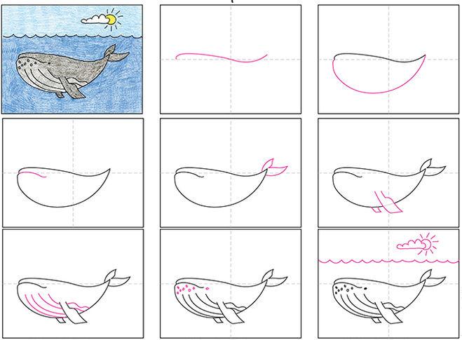 Как нарисовать кита поэтапно