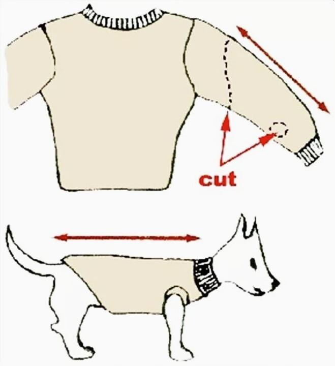 Одежда для кошки выкройка
