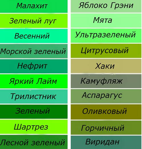 Оттенки зелёного цвета фото