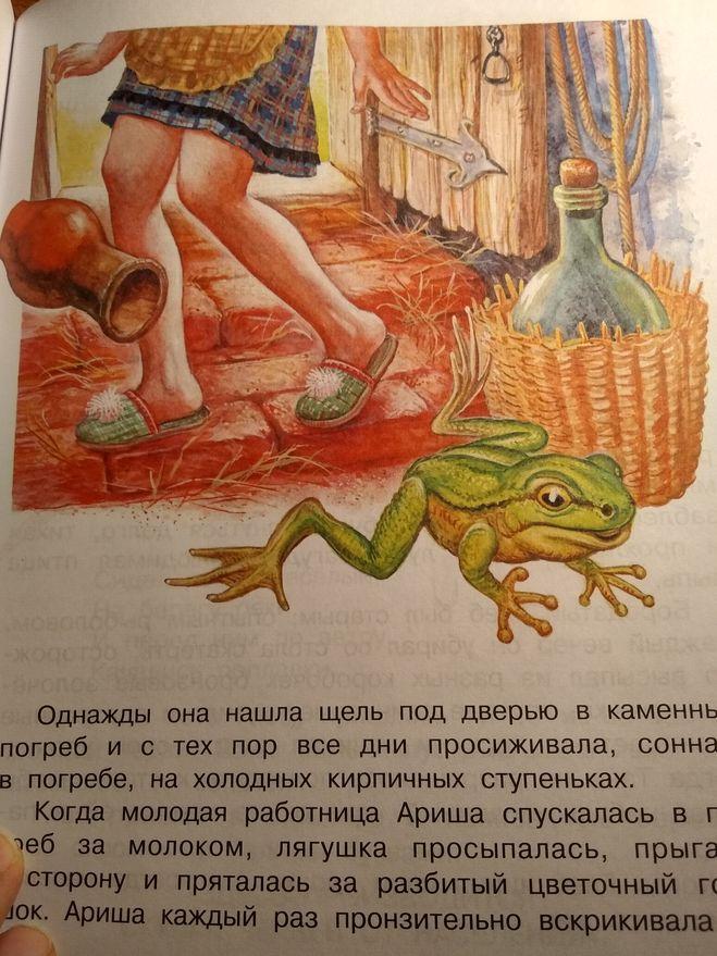 на каком чае нарисована лягушка