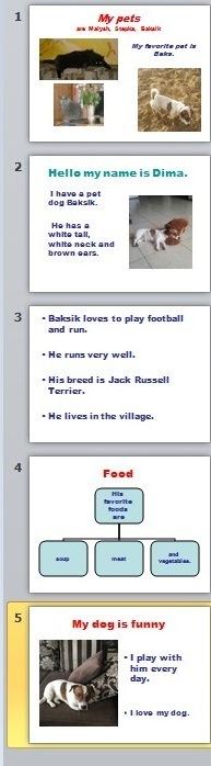 Как сделать презентацию на английском языке о домашнем питомце - 5 класс?