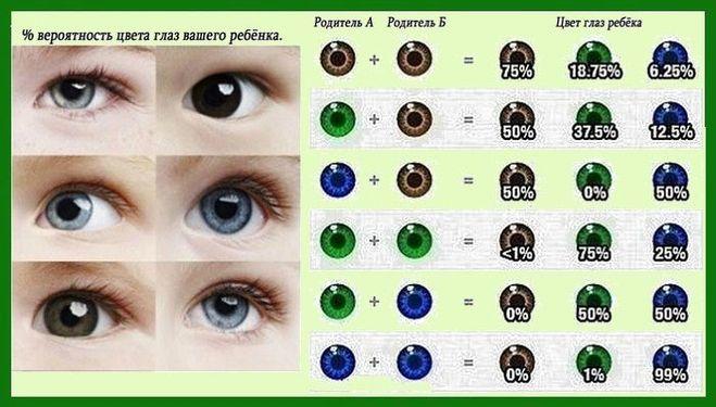 Какой будет цвет глаз у ребенка если у мамы карие а у папы голубые
