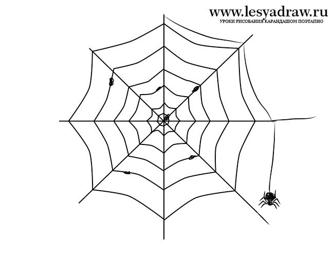 Как нарисовать паутину поэтапно для детей