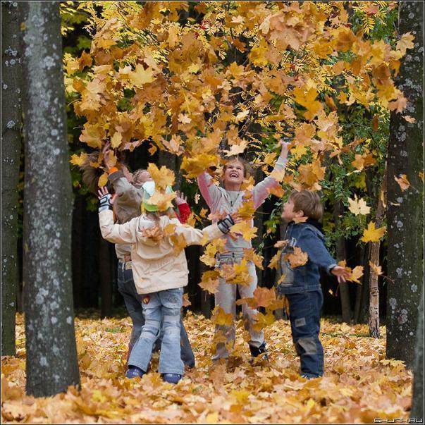 Мне осень подарила несколько картин отражение дерева