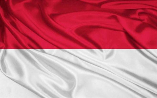 Индонезия планирует увеличить объемы импорта свинины