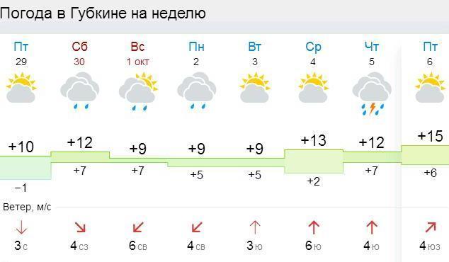 Погода на неделю в губкине