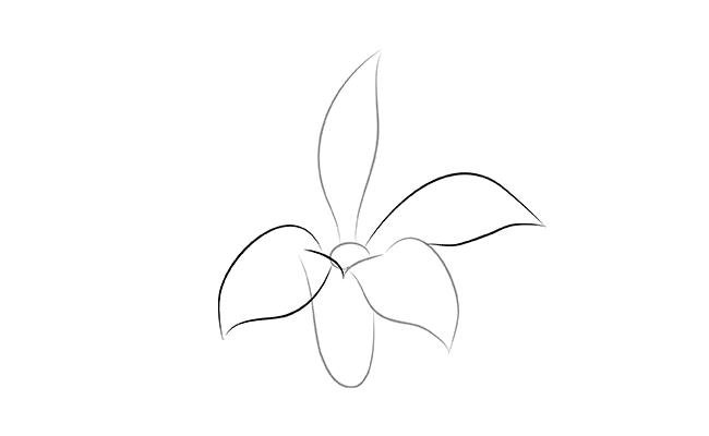 в серединке цветка.
