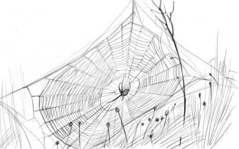 Как Рисовать Паука На Хэллоуин Пошаговая Инструкция.Doc