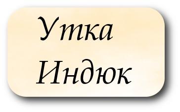 Составить примеры предложения слова утка индюк