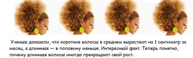 Загадка волос об волос тело об тело