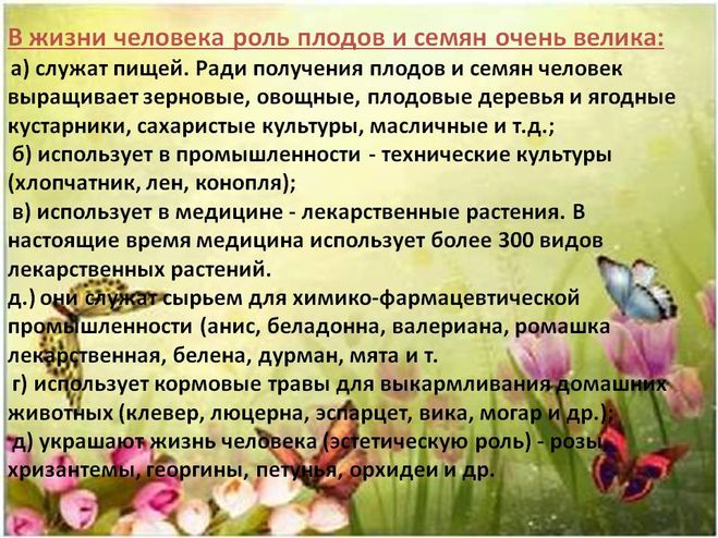 Доклад о разнообразии семян 2690